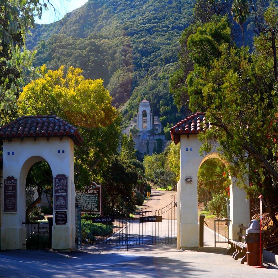 Wrigley Memorial Botanical Garden Segway Tour Catalina Island Golf Cart